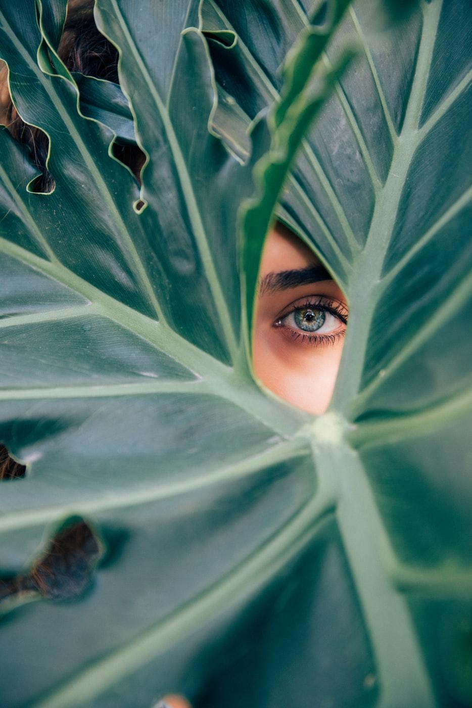 vanm-van-m-ecofriendly-ecology-sewing-made-in-belgium-picture-couture-nature-sustainable-fabrics-credits-unsplash-drew-graham-1