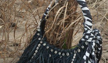 Entendez-vous le vent dans les palmiers brésiliens ?