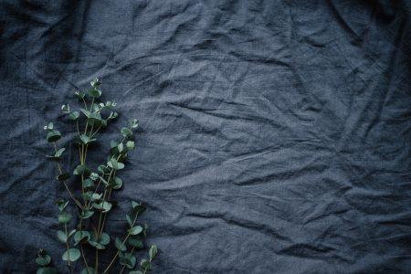 van-m-made-in-belgium-ecofriendly-sustainable-fashion-mode-playlist-journal-designer-introduction-credit-unsplash-annie-spratt